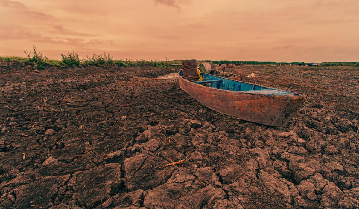 Jak ocieplenie klimatu zmieni polską wieś