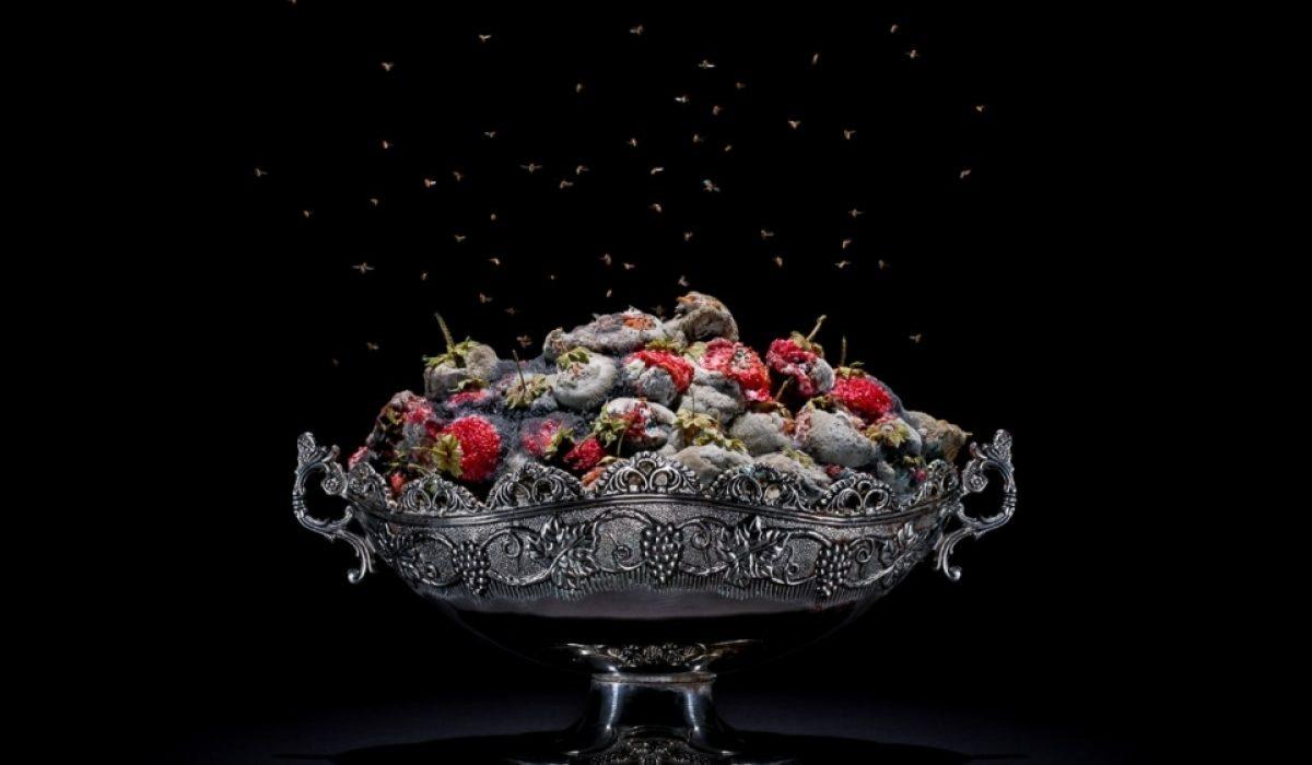 Klaus Pichler strawberries-1zajawka3