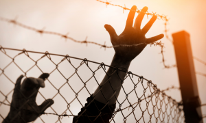 Uchodźcy - prewka 2